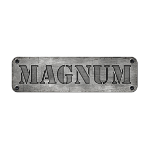 Wieczór panieński Gdynia - Magnum Arena